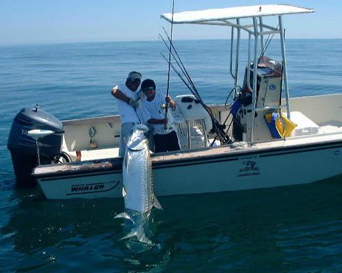 Port lavaca game fishing matagorda trouts texas city for Jamaica fishing charters