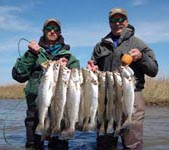 fishing charters galveston