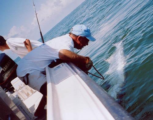 Tx fishing guides galveston off shore fishing clear lake for Houston fishing charters