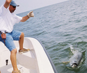 bolivar charter jamaica beach tackles fishing freeport charter guide lake jackson fishing trips port lavaca tarpon texas city fishing gulf of mexico flounders fishing